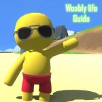 Guide for Wobbly Stick Life Mod Apk