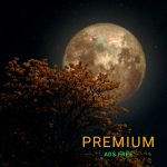 Relaxing Sounds For Sleeping Pro Apk