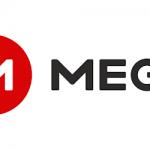 Mega Personal App